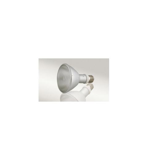 Lampe HQI Spot + Ballast