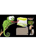 Pack maintien insectes destinés au nourrissage