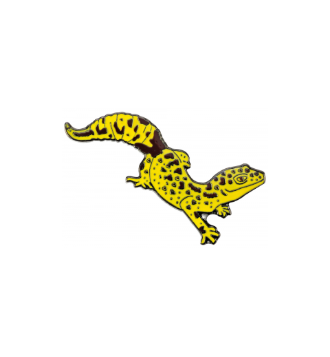 Pin's gecko lèopard