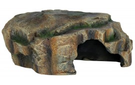 Grotte pour reptile
