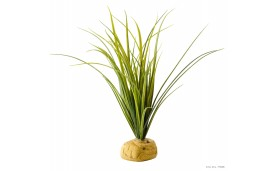Plante aquatique artificielle - Turtle grass