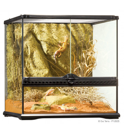 Kit complet Gecko 45 x 45 x 30