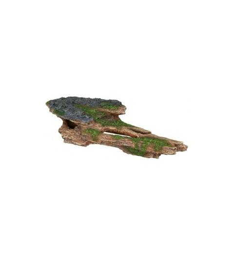 Décoration roche avec mousse