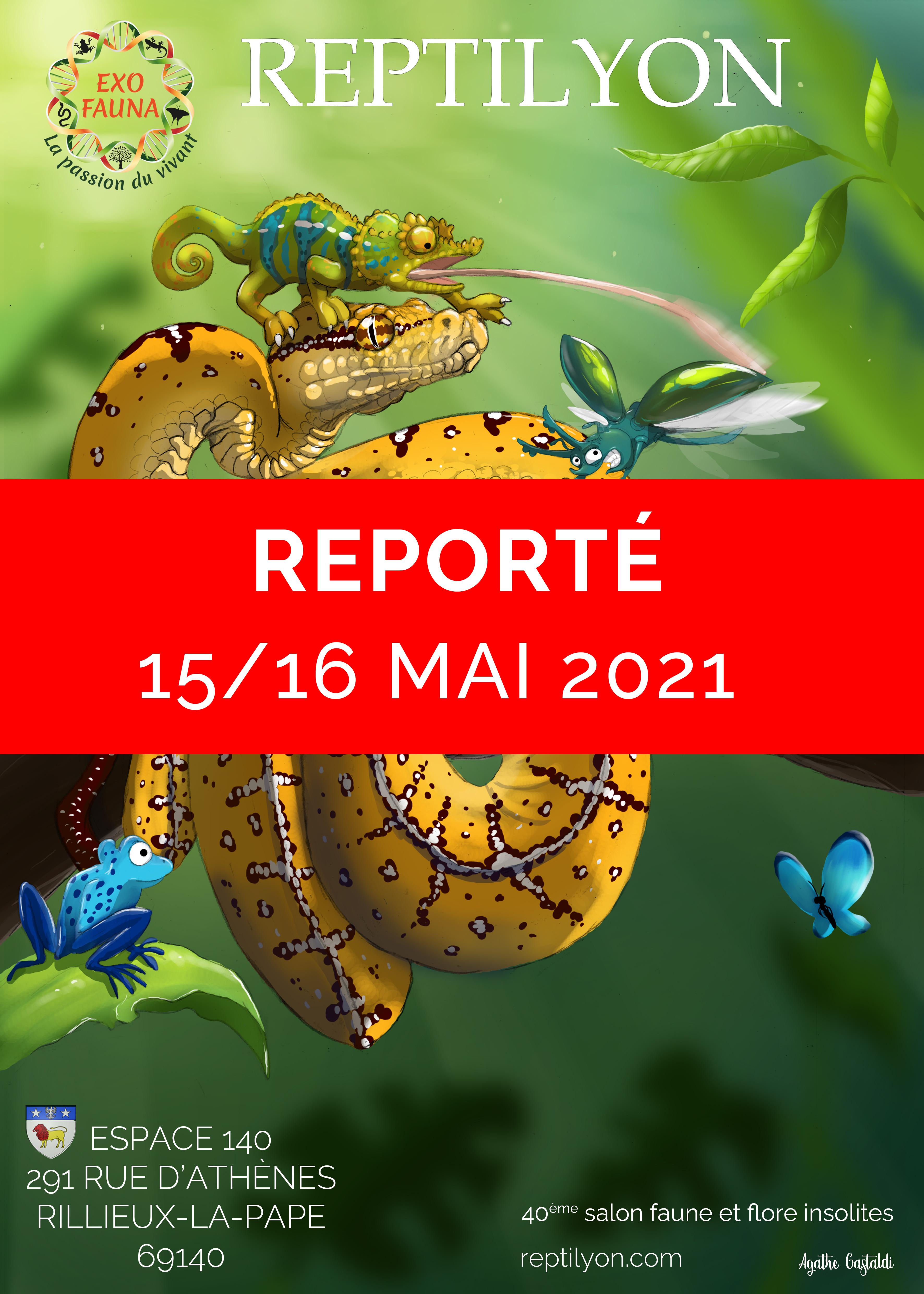 Reptilyon novembre 2020 reporté