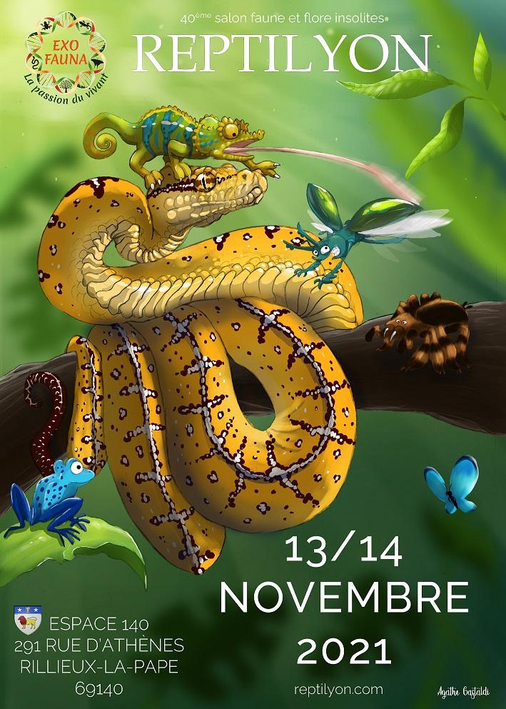 reptilyon-novembre2021